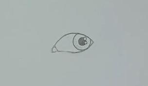 Auge zeichnen Schritt 3