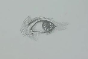 Auge zeichnen Schritt 6